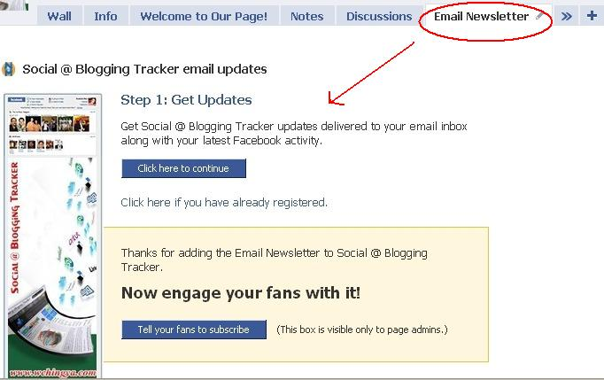 Email newsletter via nutshellmail Get More Facebook Fan#6